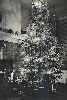Moreen family Christmas tree, 1943